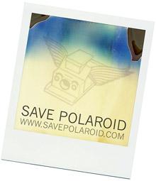 Savepolaroid